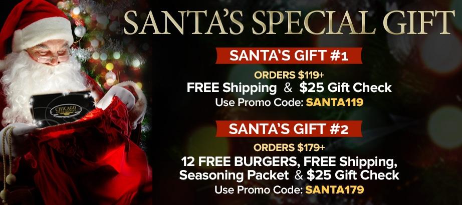 Santa's Special Gift