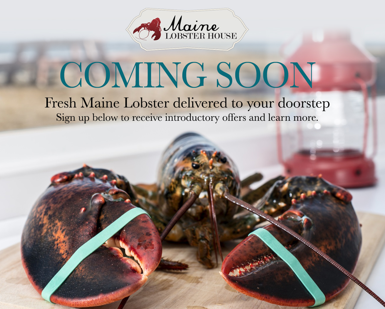 Maine Lobster House - Coming Soon!